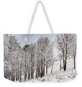 Frosty Aspen Trees Weekender Tote Bag