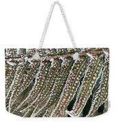 Frosty Fern - 365-322 Weekender Tote Bag