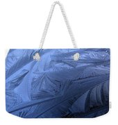 Frosty Palm Tree Fronds On Car Trunk Weekender Tote Bag