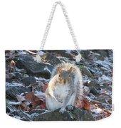 Frosty Squirrel Weekender Tote Bag