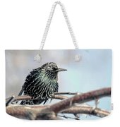 Frozen Feathers Weekender Tote Bag