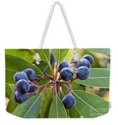 Fruit And Leaves Of The Red Bay Weekender Tote Bag