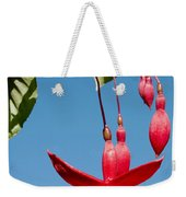 Fuchsia At Pilgrim Place In Claremont-california Weekender Tote Bag
