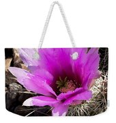 Fuchsia Cactus Blossom Weekender Tote Bag