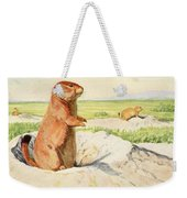 Fuertes, Louis Agassiz 1874-1927 - Burgess Animal Book For Children 1920 Prairie Dog Weekender Tote Bag