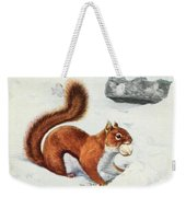 Fuertes, Louis Agassiz 1874-1927 - Burgess Animal Book For Children 1920 Red Squirrel Weekender Tote Bag