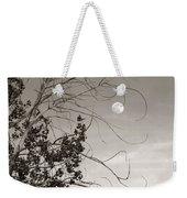Full Moon Behind Cottonwood Tree Weekender Tote Bag
