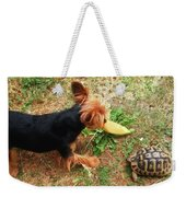 Fun On The Grass Weekender Tote Bag
