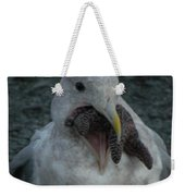 Funny Seagull With Starfish Weekender Tote Bag