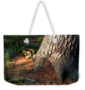 Furry Neighbor Weekender Tote Bag