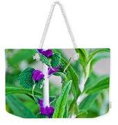 Salvia At Pilgrim Place In Claremont-california  Weekender Tote Bag