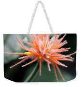 Fuzzy Orange Weekender Tote Bag