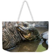 Galapagos Giant Tortoise In Pond Amongst Others Weekender Tote Bag