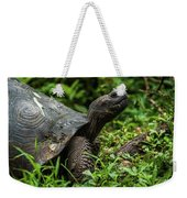 Galapagos Giant Tortoise In Profile In Woods Weekender Tote Bag