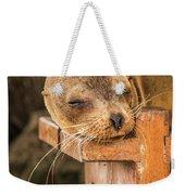 Galapagos Sea Lion Sleeping On Wooden Bench Weekender Tote Bag