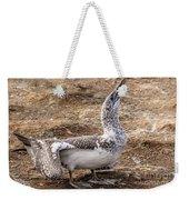 Gannet Chick 1 Weekender Tote Bag