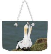 Gannet - Morus Bassanus Weekender Tote Bag