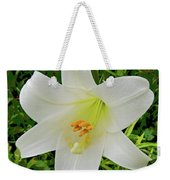 Garden Lily Posterized Background Weekender Tote Bag