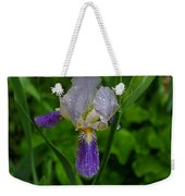 Garden Of Light Weekender Tote Bag