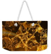 Garden Of The Golden Orbs Weekender Tote Bag