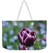 Garden Tulip With Rain Drops On A Spring Day Weekender Tote Bag