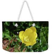 Garden With Beautiful Flowering Yellow Tulip In Bloom Weekender Tote Bag