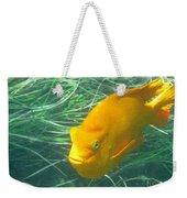 Garibali 2 Weekender Tote Bag