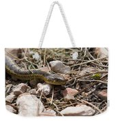 Garter Snake On The Trail In The Pike National Forest Of Colorad Weekender Tote Bag