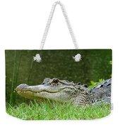 Gator 65 Weekender Tote Bag
