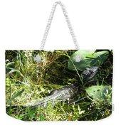 Gator Baby Weekender Tote Bag