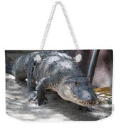 Gator On The Move Weekender Tote Bag