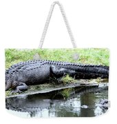 Gator On The Shore Weekender Tote Bag