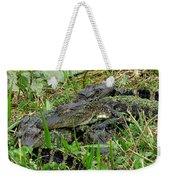 Gators 11 Weekender Tote Bag