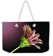 Gazania On Dark Background 2 Weekender Tote Bag