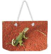 Geico Weekender Tote Bag