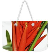 Geiger Tree Blossom In Huntington Botanical Gardens In San Marino-california Weekender Tote Bag