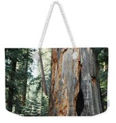 General Grant Grove Sequoia Weekender Tote Bag
