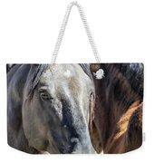 Gentle Face Of A Wild Horse Weekender Tote Bag