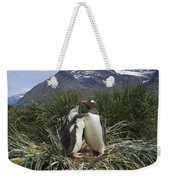 Gentoo Penguin And Young Chicks Weekender Tote Bag by Suzi Eszterhas