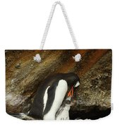 Gentoo Penguin Feeding Chicks Weekender Tote Bag
