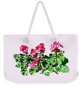 Geraniums In A Row Weekender Tote Bag