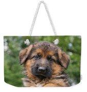 German Shepherd Puppy II Weekender Tote Bag