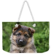 German Shepherd Puppy IIi Weekender Tote Bag by Sandy Keeton