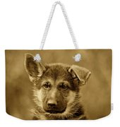 German Shepherd Puppy In Sepia Weekender Tote Bag