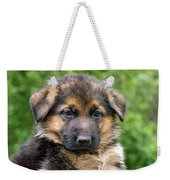 German Shepherd Puppy Weekender Tote Bag