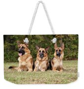 German Shepherds - Family Portrait Weekender Tote Bag