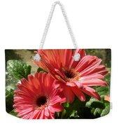 Gerberas In Coral Pink 2 Weekender Tote Bag