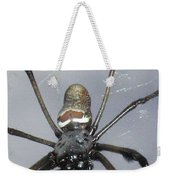 Getting To Know A Golden Orb Weaver Weekender Tote Bag