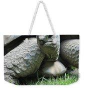 Giant Land Turtle Weekender Tote Bag