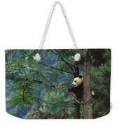 Giant Panda Ailuropoda Melanoleuca Weekender Tote Bag by Cyril Ruoso